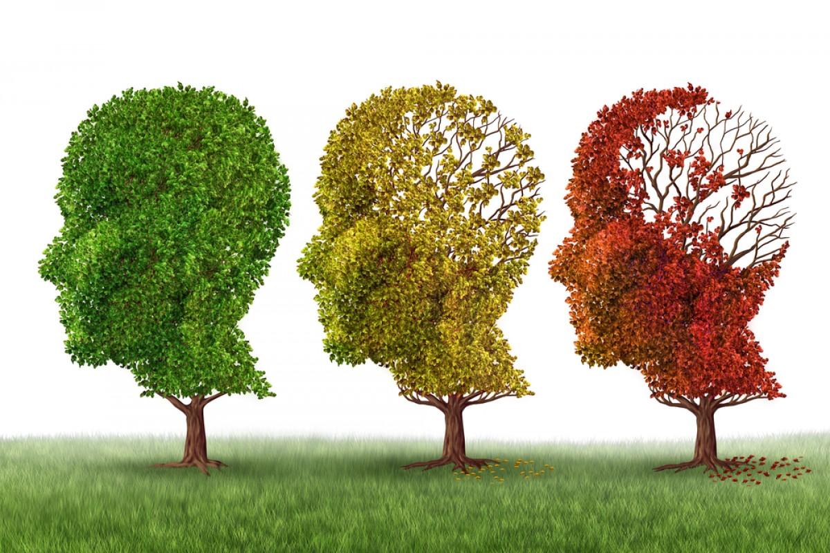Alzheimer-66ev0